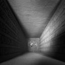 Abyssous (Ger) - Mesa LP